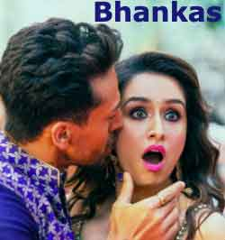 BHANKAS lyrics Baaghi 3 song